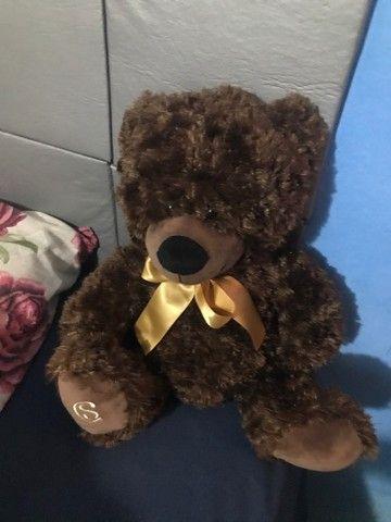 Ursos - Foto 3