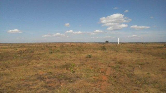 Fazenda Oportunidade de investimento  - Foto 2