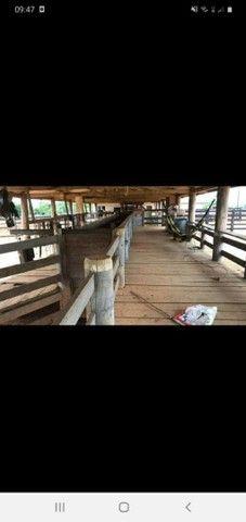 Fazenda 1100 alqueires soja ou pecuária. - Foto 2