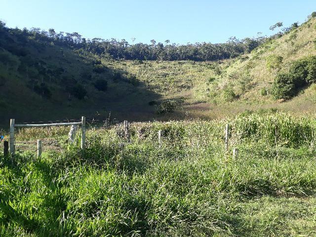 Fazenda com 174 hectares barra de são francisco - Foto 9