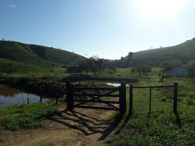 Fazenda com 174 hectares barra de são francisco - Foto 5