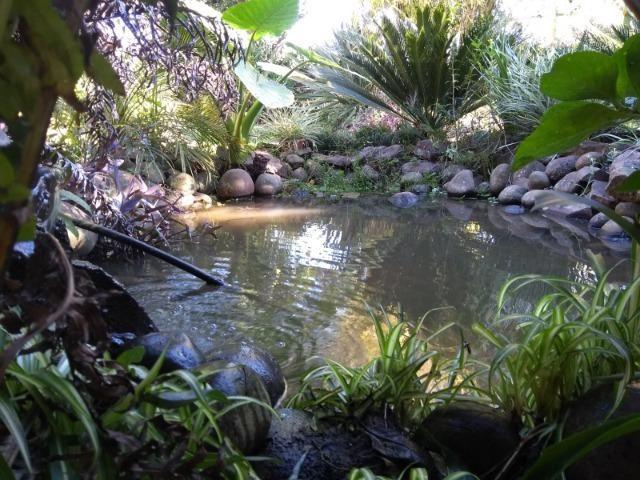 Cabana em Itaara - cód. 577 - Foto 3