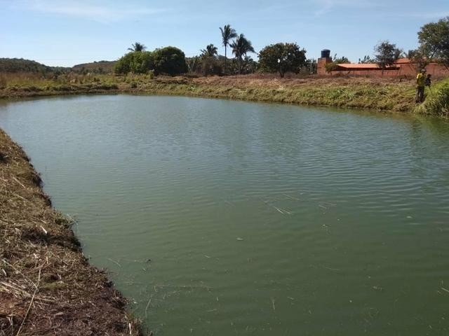 Vendo piscicultura/balneário - Foto 6