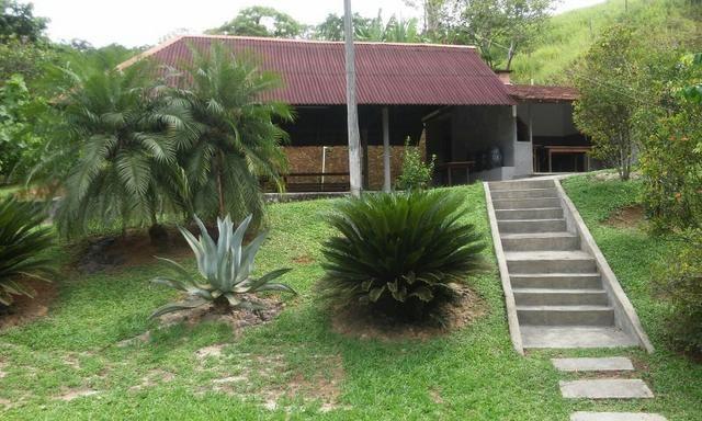 Sítio Guapimirim linda área verde -São Joaquim - Foto 4