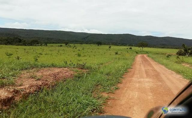 Fazenda 1500 hectares, com dupla aptidão, na Região Serra azul, Mato Grosso - Foto 7