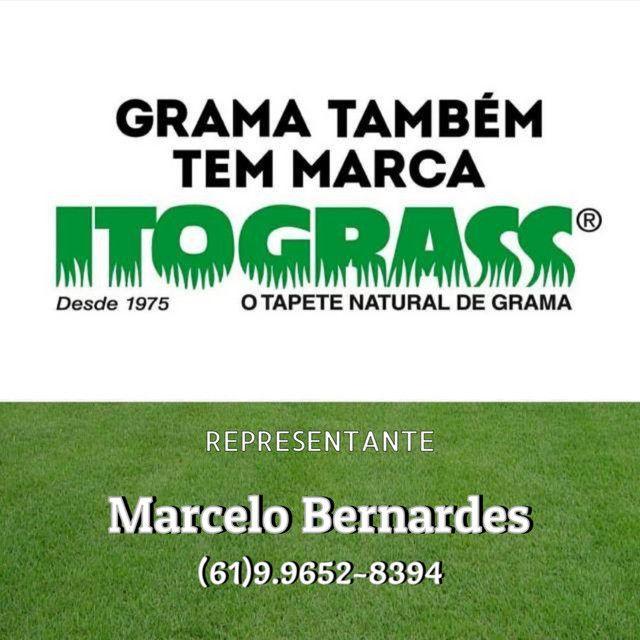 Grama Esmeralda, São Carlos, Batatais