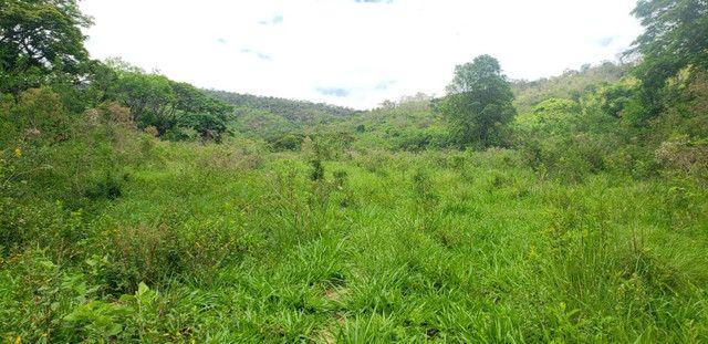 Fazenda 871 hectares no município de Divisa Alegre MG - Foto 10