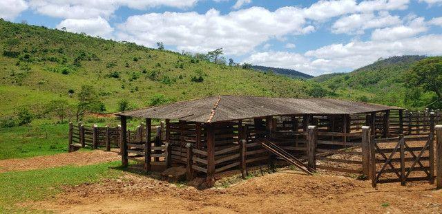 Fazenda 871 hectares no município de Divisa Alegre MG - Foto 11