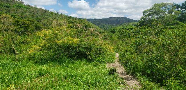 Fazenda 871 hectares no município de Divisa Alegre MG - Foto 2