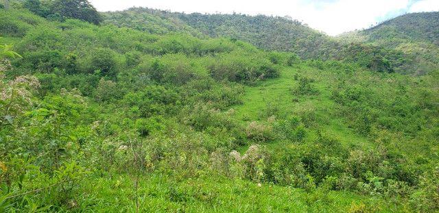 Fazenda 871 hectares no município de Divisa Alegre MG - Foto 8