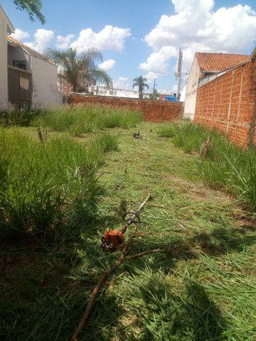 Limpeza de Terrenos, Poda de Árvores e serviços de jardinagem completo - Foto 3