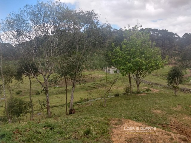Chácara para Venda em Quitandinha Rio Negrinho-SC - Foto 5