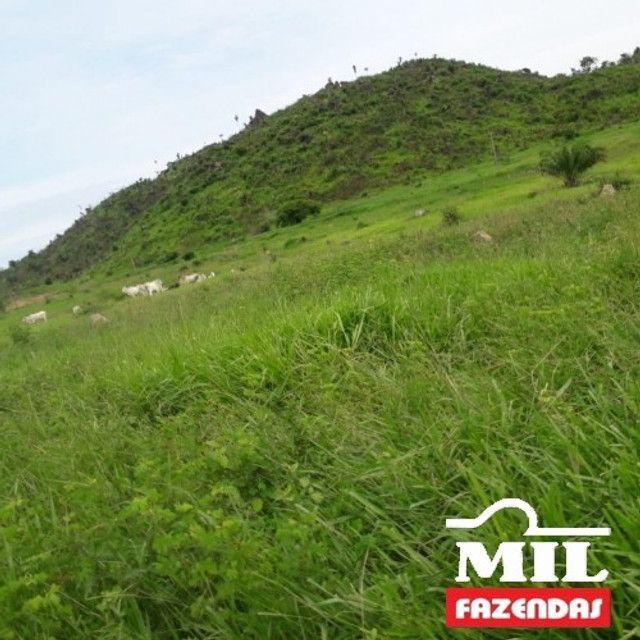 Fazenda de 320 alqueires (1550 hectares) em Vila Rica - MT - Foto 7
