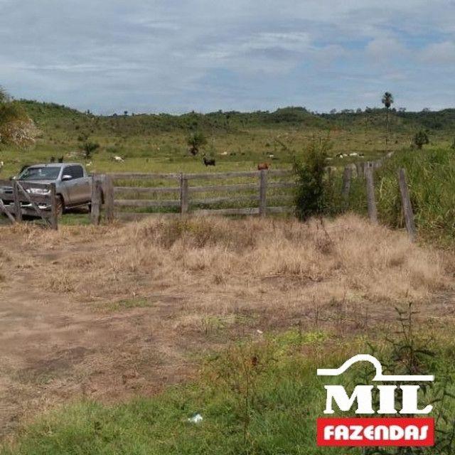 Fazenda de 320 alqueires (1550 hectares) em Vila Rica - MT - Foto 8