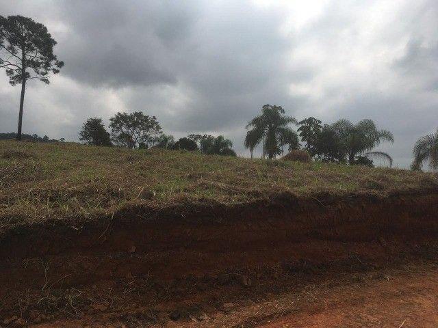 (K.A) terrenos p moradia / já demarcados - Foto 2