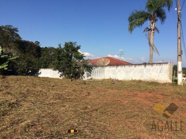 Terreno à venda em Centro, Colombo cod:300-17