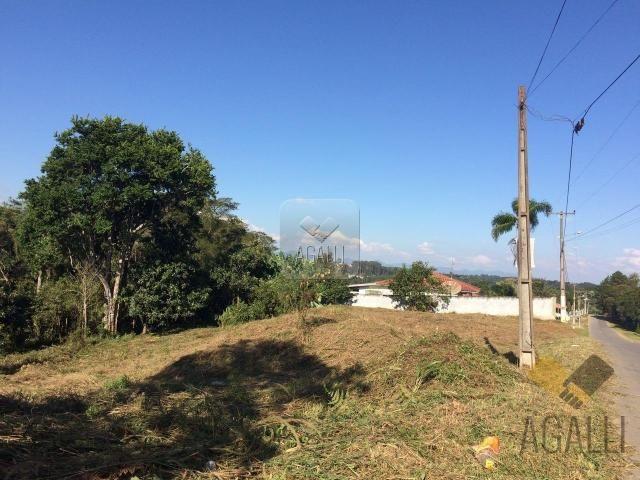 Terreno à venda em Centro, Colombo cod:300-17 - Foto 2