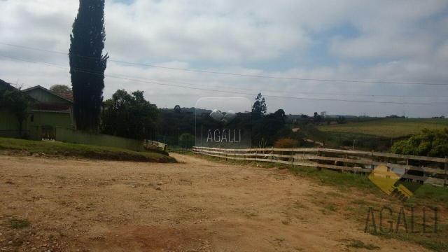 Chácara à venda em Zona rural, Contenda cod:219-16 - Foto 7