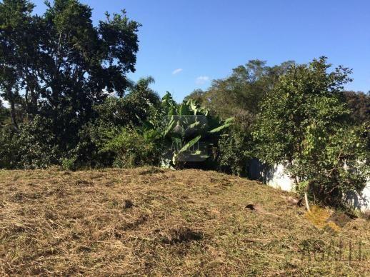 Terreno à venda em Centro, Colombo cod:300-17 - Foto 3