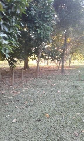 Chácara chacara, sitio, fazenda casa moradia carro, aluguel, aluga-se - Foto 7