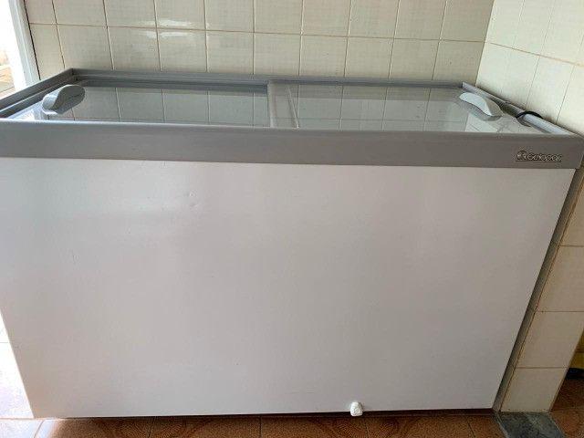 Freezer Gelopar 510 litros (e muitos outros itens de sorveteria) - Foto 2