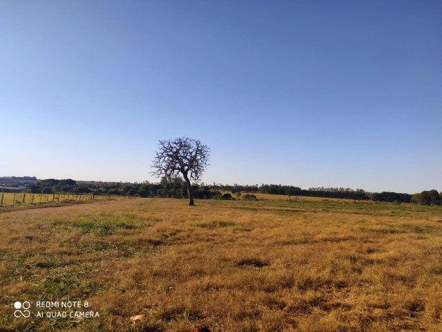 Área de 30 hectares saída São Paulo Próximo da BR 163 - Foto 6