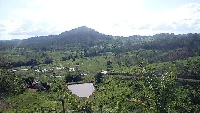 Fazenda 8 Alqueires - Foto 2