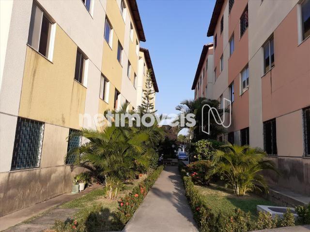 Apartamento à venda com 2 dormitórios em Serrinha, Fortaleza cod:769589 - Foto 3