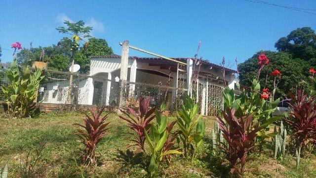 Chácara perto do café contri, estrada Mutum Km 1, próximo da marcenaria e marmoraria - Foto 9