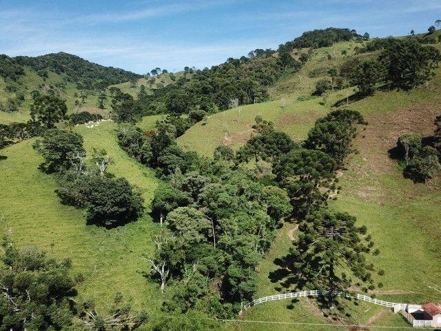 Maravilhoso Sítio de 9.9 Alqueires na Serra Mantiqueira Município Piranguçu-Mg - Foto 12