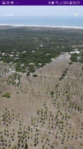 Área med. 100 ta = 435.600 m2 no Povoado Coqueiros - Foto 13