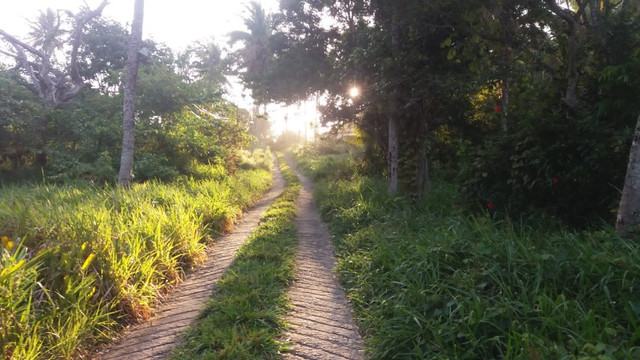 Casa em Olivença temporada - Foto 10
