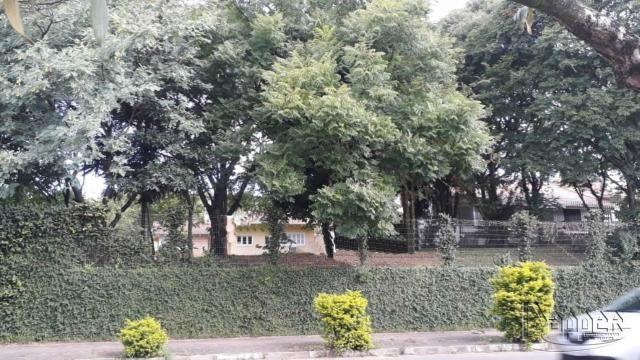 Terreno à venda em União, Estância velha cod:16830 - Foto 2