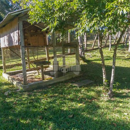 Chácara à venda em Borda do campo, São josé dos pinhais cod:152480 - Foto 18