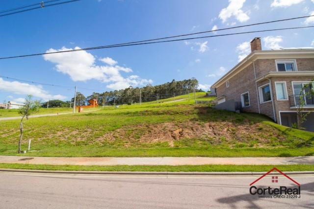 Terreno à venda em Vila nova, Porto alegre cod:6021 - Foto 4
