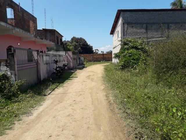 Terreno na Ilha de Amoreiras ( Ponta de Areia-Itaparica) - Foto 8
