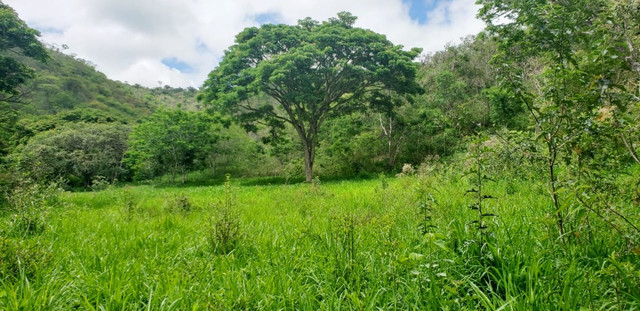 Fazenda 871 hectares no município de Divisa Alegre MG - Foto 17