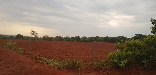 Fazenda 219 alqueires | região Caçu | boa pra lavoura plana - Foto 2