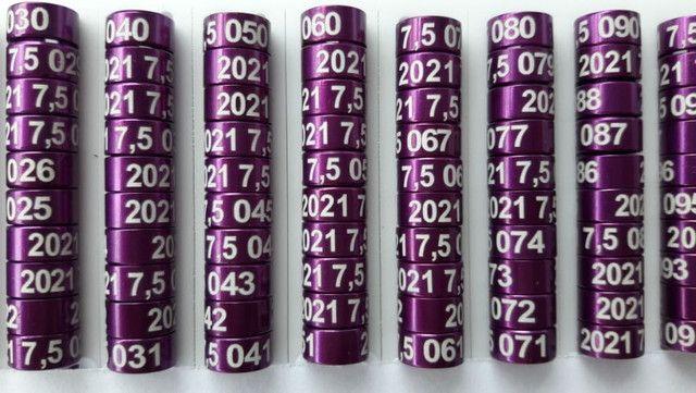 Anilhas de Marcação em Alumínio para Ring Neck 7,5mm Pack com 10 Unidades Ano 2021 Violeta