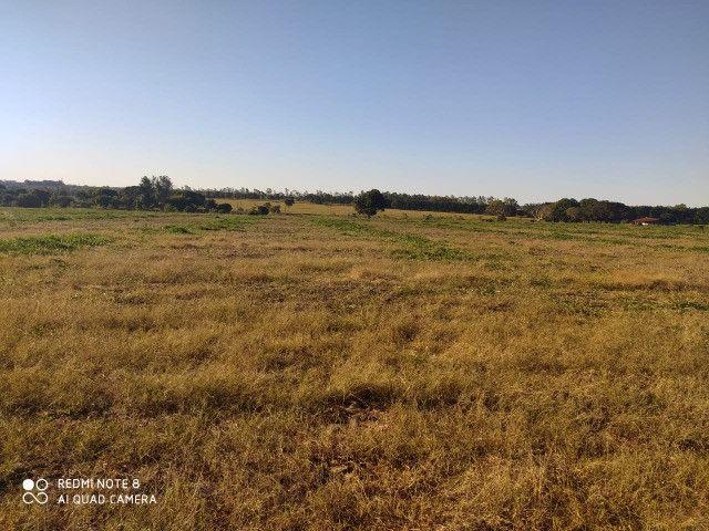 Área de 30 hectares saída São Paulo Próximo da BR 163 - Foto 13