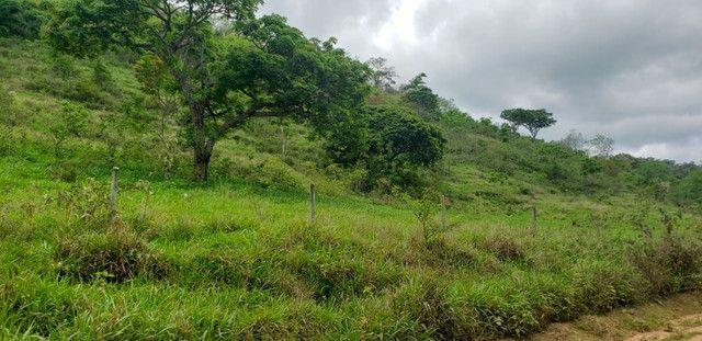 Fazenda 871 hectares no município de Divisa Alegre MG - Foto 13