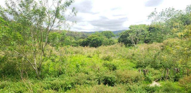 Fazenda 871 hectares no município de Divisa Alegre MG - Foto 9