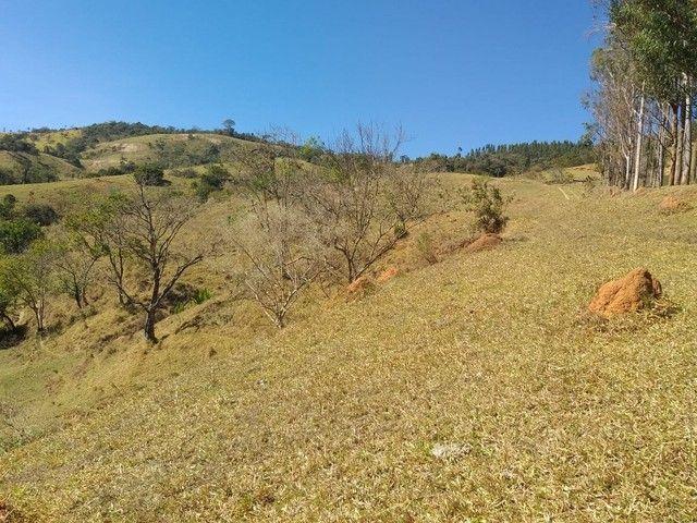 Fazenda 80 Alqueires Sendo 20 Alqueires Mata APP, Casa Sede(Em Reforma) e Caseiro Agua Nas - Foto 16