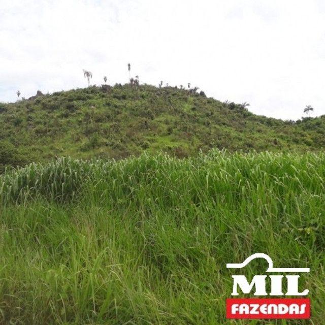 Fazenda de 320 alqueires (1550 hectares) em Vila Rica - MT - Foto 4