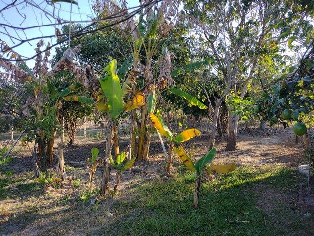 Chácara a Venda em Porangaba Bairro dos Marianos com 1.000 m² Terreno, Área Construída 200 - Foto 10