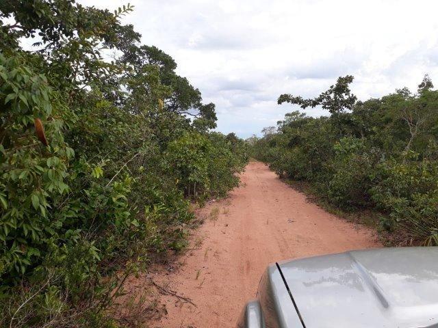 Fazenda Paraiso - Foto 14