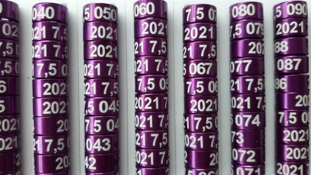 Anilhas de Marcação em Alumínio para Ring Neck 7,5mm Pack com 10 Unidades Ano 2021 Violeta - Foto 2