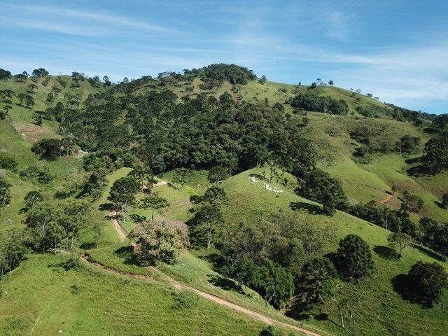 Maravilhoso Sítio de 9.9 Alqueires na Serra Mantiqueira Município Piranguçu-Mg - Foto 14