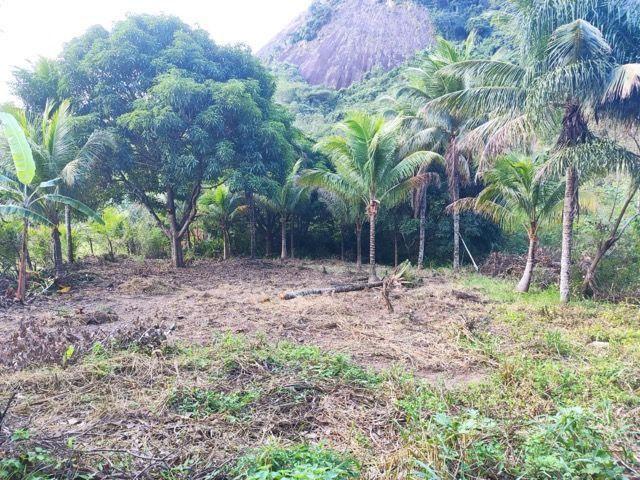 Terreno em São João do Jaboti - Espírito Santo - Foto 8