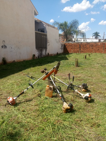 Limpeza de Terrenos, Poda de Árvores e serviços de jardinagem completo
